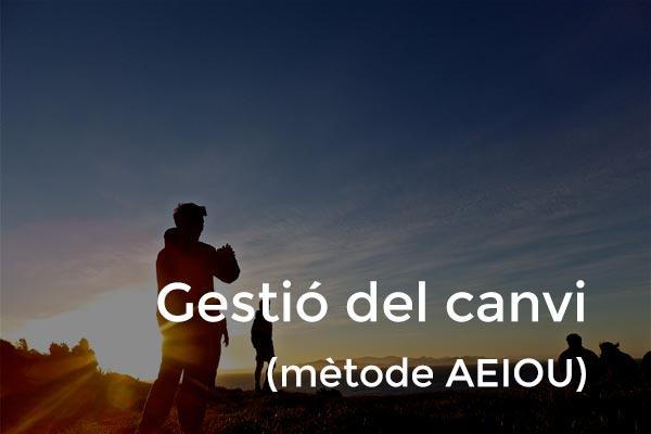 gestio_canvi_p