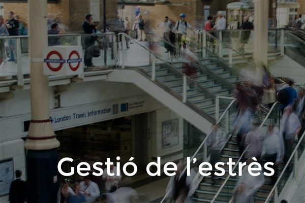 gestio_estres_p